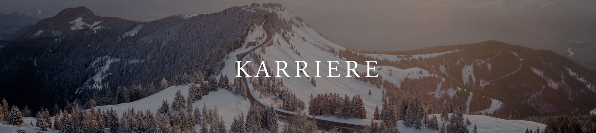 Website Header Karriere
